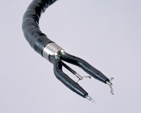 Two arms on the end of the flexible endoscope